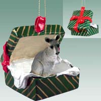 Kangaroo Gift Box Green Ornament