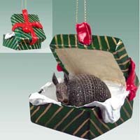 Armadillo Gift Box Green Ornament