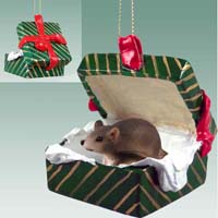 Mouse Gift Box Green Ornament