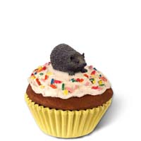 Hedgehog Cupcake Trinket Box
