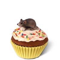 Mouse Cupcake Trinket Box