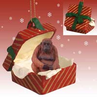 Orangutan Gift Box Red Ornament