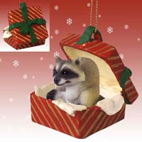 Raccoon Gift Box Red Ornament