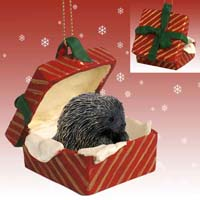 Porcupine Gift Box Red Ornament