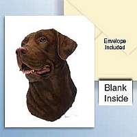 Labrador Retriever Chocolate Greeting Cards Set of 6 *Enevelope NOT included!*