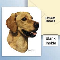 Labrador Retriever Golden Greeting Cards Set of 6 *Enevelope NOT included!*