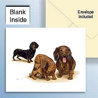 Dachshund Red Greeting Cards Set of 6 *Enevelope NOT included!*