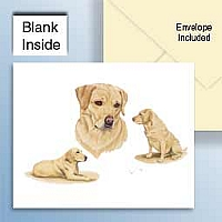 Labrador Retriever Yellow Greeting Cards Set of 6 *Enevelope NOT included!*