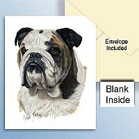 Bulldog Greeting Cards Set of 6 *Enevelope NOT included!*