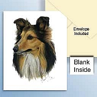 Sheltie Tricolor Greeting Cards Set of 6 *Enevelope NOT included!*