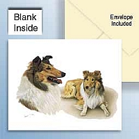 Collie Sable Greeting Cards Set of 6 *Enevelope NOT included!*