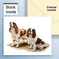 Cavalier King Charles Greeting Cards Set of 6 *Enevelope NOT included!*