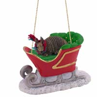 Armadillo Sleigh Ride Ornament