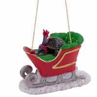 Turtle Sleigh Ride Ornament