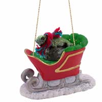 Iguana Sleigh Ride Ornament