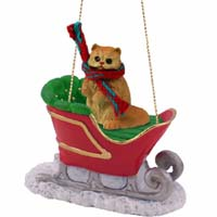Red Persian Sleigh Ride Ornament