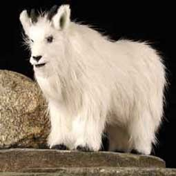 Mountain Goat Fur Figurine