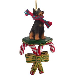 Doberman Pinscher Black w/Cropped Ears Candy Cane Ornament