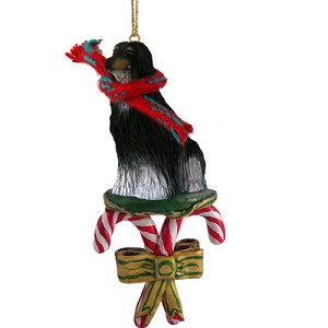 Afghan Black & White Candy Cane Ornament