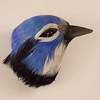 Blue Jay Feathered Magnet
