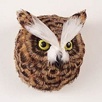 Owl Feathered Magnet