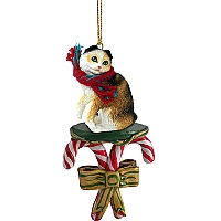 Tortoise & White Scottish Fold Candy Cane Ornament