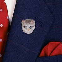 Silver Shorthaired Tabby Cat Pin