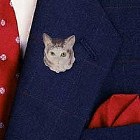 Silver Tabby Maine Coon Cat Pin