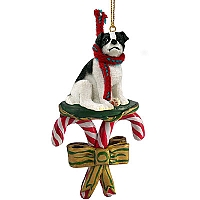 Jack Russell Terrier Black & White w/Smooth Coat Candy Cane Ornament