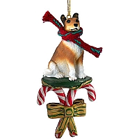 Collie Smoth Hair Candy Cane Ornament