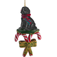 Labradoodle Black Candy Cane Ornament