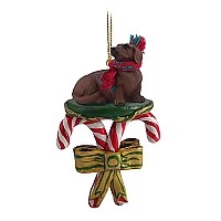 Dachshund Red Candy Cane Ornament
