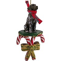 German Short Haired Pointer Candy Cane Ornament