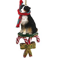 Australian Shepherd Tricolor w/Docked Tail Candy Cane Ornament
