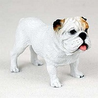 Bulldog White