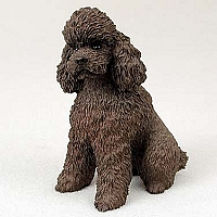 Poodle Chocolate Sportcut