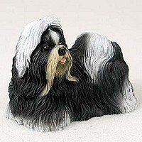 Shih Tzu Black White