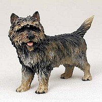 Cairn Terrier Brindle