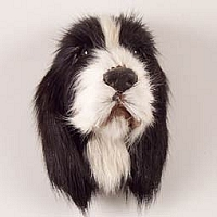 Springer Spaniel Black & White Fur Magnet