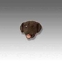 Labrador Retriever Chocolate Tiny One head