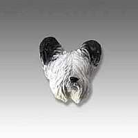Skye Terrier Tiny One head