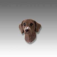German Short Haired Pointer Tiny One head
