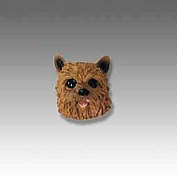 Norwich Terrier Tiny One head