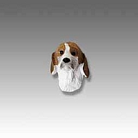 American Foxhound Tiny One head