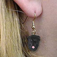 Newfoundland Earrings Hanging