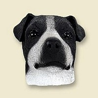 Jack Russell Terrier Black & White w/Smooth Coat Doogie Head