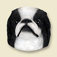 Japanese Chin Black & White Doogie Head