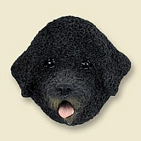 Portuguese Water Dog Doogie Head