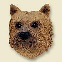 Norwich Terrier Doogie Head