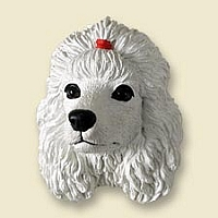 Poodle White Magnet